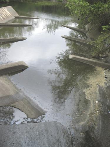 Tacony Creek 3